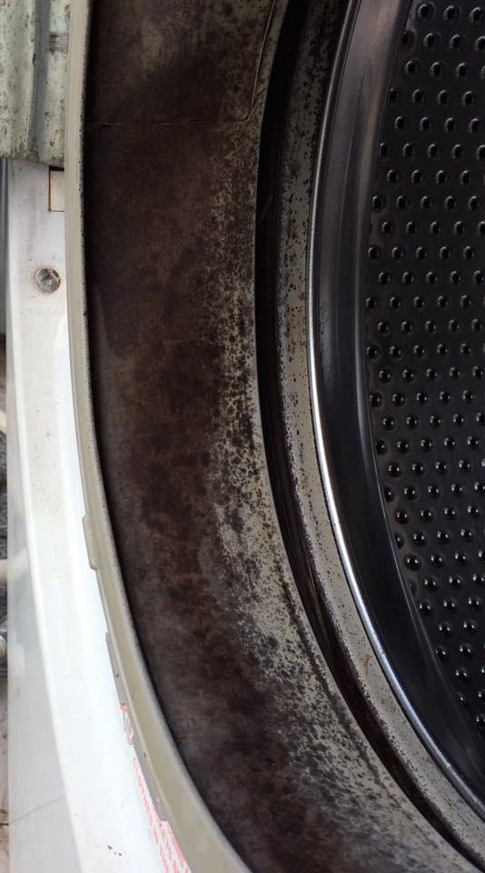 Vệ sinh máy giặt quận Bình Thạnh |vệ sinh máy giặt nội địa nhật bình thạnh